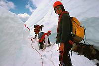 Hikers roped together for Safety while hiking in Snow on Coast Mountains, near Pemberton, BC, British Columbia, Canada