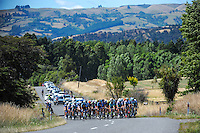 The main peloton climbs Gladstone Road on the second lap. UCI Oceania Tour - NZ Cycling Classic stage one - Masterton to Gladstone circuit in Wairarapa, New Zealand on Wednesday, 20 January 2016. Photo: Dave Lintott / lintottphoto.co.nz