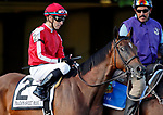 ARLINGTON HEIGHTS, IL - AUGUST 12: Prado's Sweet Ride #2, ridden by Carlos Marquez, Jr., during the post parade before the Beverly D. Stakes on Arlington Million Day at Arlington Park on August 12, 2017 in Arlington Heights, Illinois. (Photo by Jon Durr/Eclipse Sportswire/Getty Images)