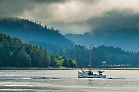 Commercial fishing vessels in Sitka Sound, in the coastal town of Sitka, Alaska