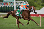 ARLINGTON HEIGHTS,IL-AUGUST 13: Da Big Hoss,ridden by Florent Geroux,wins the American St.Leger at Arlington International Race Track on August 13,2016 in Arlington Heights,Illinois (Photo by Kaz Ishida/Eclipse Sportswire/Getty Images)