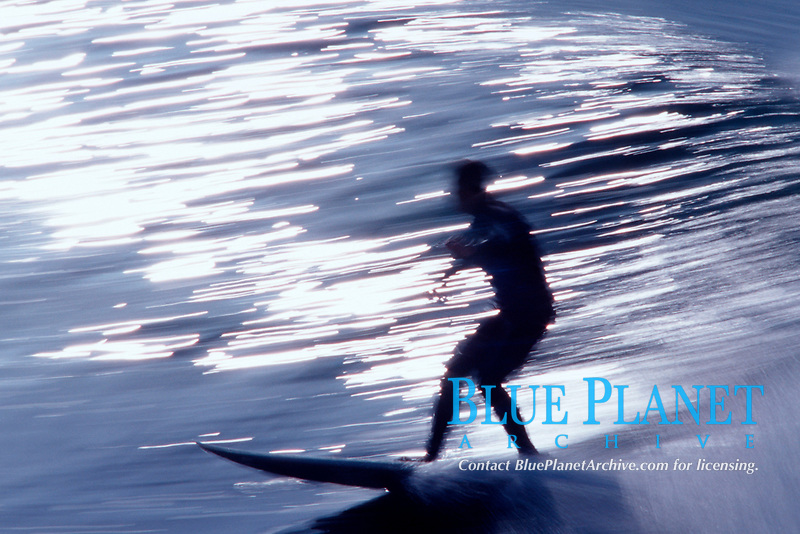 surfer riding a wave, Scott's Creek, just south of Davenport, California, East Pacific Ocean