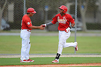 GCL Cardinals third baseman Rafael Medina (29) congratulated by manager Steve Turco (7) after hitting a home run during the first game of a double header against the GCL Mets on July 17, 2013 at Roger Dean Complex in Jupiter, Florida.  GCL Cardinals defeated the GCL Mets 6-5 in twelve innings.  (Mike Janes/Four Seam Images)