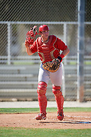 GCL Cardinals catcher Brandon Purcell (4) during a game against the GCL Nationals on August 5, 2018 at Roger Dean Chevrolet Stadium in Jupiter, Florida.  GCL Cardinals defeated GCL Nationals 17-7.  (Mike Janes/Four Seam Images)