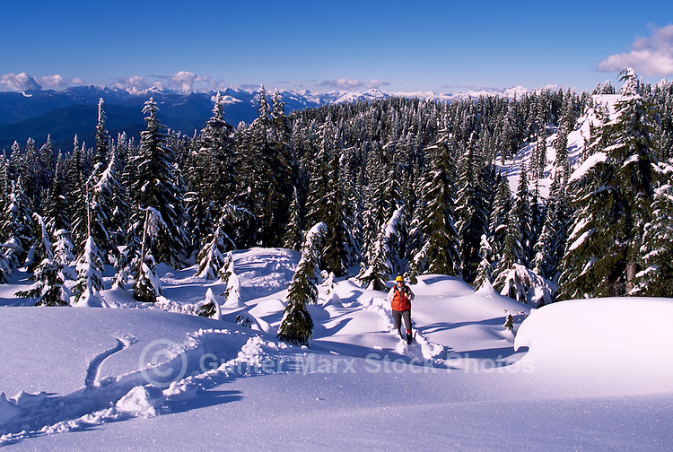 Woman hiking in Snow, Mount Seymour Provincial Park (Coast Mountains), North Vancouver, BC, British Columbia, Canada (Model Released)