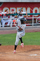 Hector Vargas (19) of the Billings Mustangs at bat against the Orem Owlz in Game 2 of the Pioneer League Championship at Home of the Owlz on September 16, 2016 in Orem, Utah. Orem defeated Billings 3-2 and are the 2016 Pioneer League Champions. (Stephen Smith/Four Seam Images)