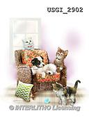 GIORDANO, CUTE ANIMALS, LUSTIGE TIERE, ANIMALITOS DIVERTIDOS, paintings+++++,USGI2902,#AC#
