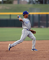 Enrique Valdez - 2019 AZL Royals (Bill Mitchell)