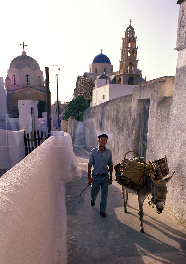 "A donkey performs its role as """"beast of burden"""" for a resident of the town of Messaria. Island of Santorini, Greece."