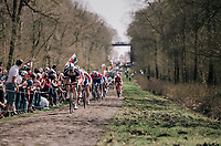 At the infamous Arenberg Forest / Bois de Wallers<br /> <br /> 116th Paris-Roubaix (1.UWT)<br /> 1 Day Race. Compiègne - Roubaix (257km)