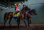 ARCADIA, CA -APRIL 08: Able Tasman #4, ridden by Mike Smith walks to the track for the Santa Anita Oaks at Santa Anita Park on April 08, 2017 in Arcadia, California. (Photo by Alex Evers/Eclipse Sportswire/Getty Images)