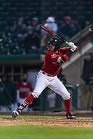 Fort Wayne TinCaps Agustin Ruiz (20) at bat during a Midwest League game against the Fort Wayne TinCaps at Parkview Field on April 30, 2019 in Fort Wayne, Indiana. Kane County defeated Fort Wayne 7-4. (Zachary Lucy/Four Seam Images)