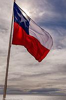 south America, Chile, Region de Magellanes y de la Antartica Chilena,Isla Magdalena, Magellanic chilean flag