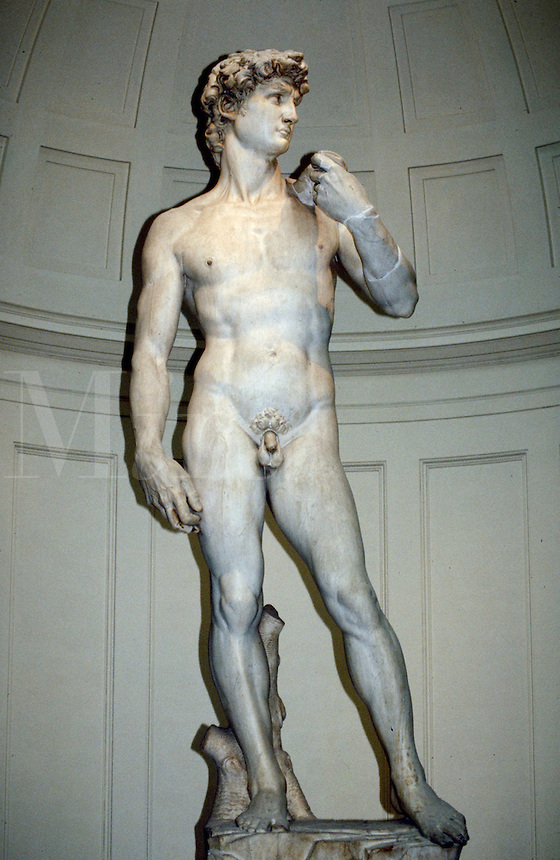 David sculpture on display in Firenze. Michelangelo. Florence Tuscany Italy Europe.