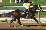 Kauai Katie, ridden by Rosie Napravnick, wins the Futurity Stakes (GII) for 2-year old fillies, going 6 furlongs at Belmont Park, Elmont, New York.  Trainer Todd Pletcher  Owner Stonestreet Stables.