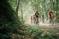 Danny Van Poppel (NED/LottoNL-Jumbo)<br /> <br /> 3rd Dwars Door Het hageland 2018 (BEL)<br /> 1 day race:  Aarschot > Diest: 198km
