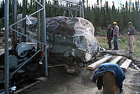 Jade Cutting on Site, Northern BC, British Columbia, Canada