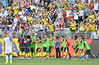 Santa Clara, CA - Friday June 03, 2016: Colombia fans celebrate after a goal by their team during a Copa America Centenario Group A match between United States (USA) and Colombia (COL) at Levi's Stadium.