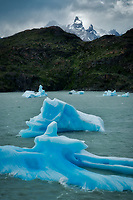 icebergs in Lago Grey.torres Del Paine, Chile, Argentina in Lago Grey Torres del Paine National Park, Chile. Argentina in Lago Grey and Cuernas Paine peaks.Torres del Paine National Park, Chile. Argentina in Lago Grey and Cuernas Paine peaks.Torres del Paine National Park, Chile. Argentina