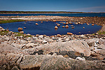 A tidal pool in the Petit Manan Unit, Maine Coastal Islands National Wildlife Refuge, Steuben, ME, USA