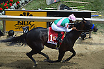 MAY 16, 2015: Scenes from around the track on Preakness Day  at Pimlico Race Course in Baltimore, Maryland. John Voorhees/ESW/Cal Sport Media
