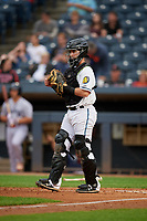 Akron RubberDucks catcher Logan Ice (9) during an Eastern League game against the Reading Fightin Phils on June 4, 2019 at Canal Park in Akron, Ohio.  Akron defeated Reading 8-5.  (Mike Janes/Four Seam Images)