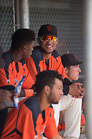 Angeddy Almanzar (21) of the San Francisco Giants during an Instructional League game against the Kansas City Royals at the Giants Training Complex on October 17, 2017 in Scottsdale, Arizona. (Zachary Lucy/Four Seam Images)