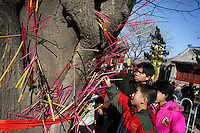 CHINA. Placing incense on a tree during Chinese New Year in Baiyun Temple in Beijing.  Chinese New Year, or Spring Festival, is the most important festival and holiday in the Chinese calendar In mainland China, many people use this holiday to visit family and friends and also visit local temples to offer prayers to their ancestors. The roots of Chinese New Year lie in combined influences from Buddhism, Taoism, Confucianism, and folk religions.  2008.