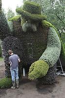 Horticulteurs a l'oeuvre durant les préparations des Mosaicultures, Mai  2013.<br /> <br /> Photo :  Agence Quebec PressePréparations des Mosaicultures, Mai  2013.<br /> <br /> Photo :  Agence Quebec Presse