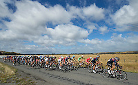 Cyclists make their way along Opaki Kaiparoro Road towards Mauriceville during the NZ Cycle Classic stage one of the UCI Oceania Tour in Wairarapa, New Zealand on Sunday, 22 January 2017. Photo: Hagen Hopkins / lintottphoto.co.nz