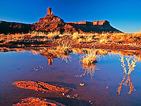 Deadhorse Chminey near Deadhorse Point near Canyonlands National Park in Utah reflects in a spring pond