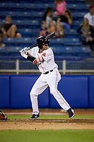 Salem Red Sox designated hitter C.J. Chatham (22) at bat during a game against the Lynchburg Hillcats on May 10, 2018 at Haley Toyota Field in Salem, Virginia.  Lynchburg defeated Salem 11-5.  (Mike Janes/Four Seam Images)