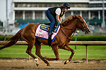 LOUISVILLE, KY - MAY 03: Rayya, trained by Bob Baffert, exercises in preparation for the Kentucky Oaks at Churchill Downs on May 3, 2018 in Louisville, Kentucky. (Photo by Alex Evers/Eclipse Sportswire/Getty Images)