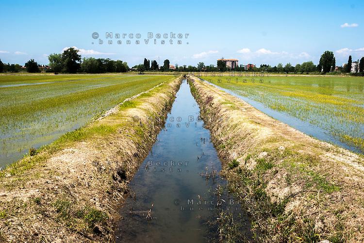 Risaie e canale d'irrigazione nell'Abbiatense presso Gaggiano nel Parco agricolo Sud Milano --- Rice fields and irrigation canal near Gaggiano in the Rural Park South Milan