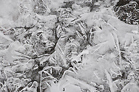 """RIVER ICE-2<br />