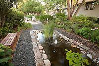 Simple bench by rectangular pond in garden room edged by gravel path under trees, Mayberg backyard habitat garden