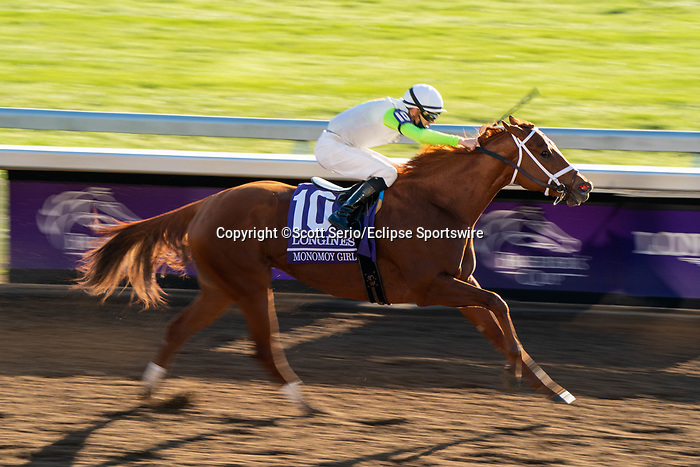 November 7, 2020 : Monomoy Girl, ridden by Florent Geroux, wins the Longines Distaff on Breeders' Cup Championship Saturday at Keeneland Race Course in Lexington, Kentucky on November 7, 2020. Scott Serio/Eclipse Sportswire/Breeders' Cup/CSM
