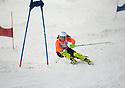 pro slalom run 2