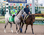 HALLANDALE BEACH, FL - JAN 20:Galleon Mast #5 with Irad Ortiz Jr. on board for trainer David Fawkes prepares to run the $150,000 Sunshine Millions Turf Stakes at Gulfstream Park on January 20, 2018 in Hallandale Beach, Florida. (Photo by Bob Aaron/Eclipse Sportswire/Getty Images)