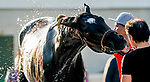 April 27, 2021: Rock Your World, trained by trainer John Sadler, gets a bath after exercising at Churchill Downs on April 27, 2021 in Louisville, Kentucky. Scott Serio/Eclipse Sportswire/CSM