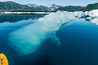 Summer landscape of iceberg above and below water at Bear Glacier Lagoon in Kenai Fjords National Park.  Kenai Penninsula, Summer, Alaska   <br /> <br /> Photo by Jeff Schultz/  (C) 2019  ALL RIGHTS RESERVED