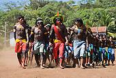 Pará State, Brazil. Aldeia Kokraimoro (Kayapo); warriors in full body paint and featehr cocaas dancing during the Festa de Jabuti (land tortoise festival).