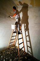 Maler auf der Leiteri: EUROPA, DEUTSCHLAND, HAMBURG, (EUROPE, GERMANY), 12.12.2012  Ein Maler bei Spachelarbeiten auf der Leiter
