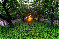 Sunset at 86th Street in Carl Schurz Park at Upper East Side.