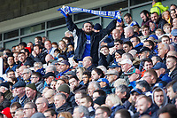A Cardiff supporter raises his scarf during the Premier League match between Cardiff City and Brighton & Hove Albion at the Cardiff City Stadium, Cardiff, Wales, UK. Saturday 10 November 2018