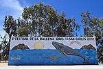 Gray Whale Billboard