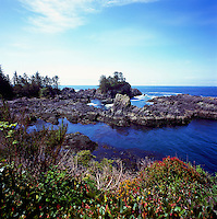 Rugged Coastline along Pacific West Coast of Vancouver Island, near Ucluelet, BC, British Columbia, Canada