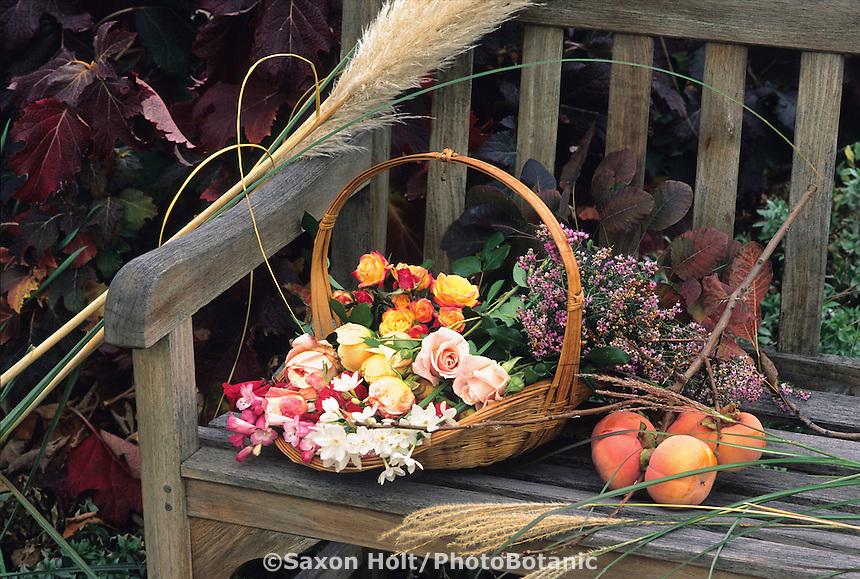 Basket of autumn flowering cut flowers on a garden bench