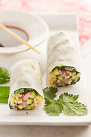 Fresh vegetable spring rolls filled with herbs and crunchy vegetables