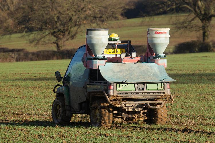 19.11.2020 Applying slug pellets to Winter cereals.<br /> ©Tim Scrivener Photographer 07850 303986<br />      ....Covering Agriculture In The UK....